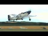 Дикая посадка Мустанга (Mustang P 51)